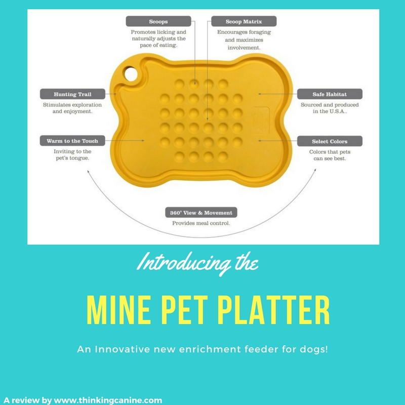 An Innovative New Enrichment Feeder For Dogs!