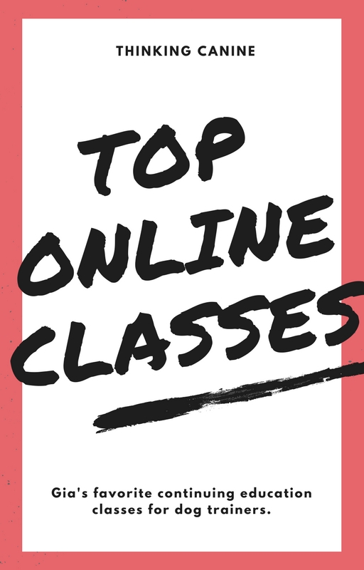 Gia's Top Online Classes For Dog Trainers